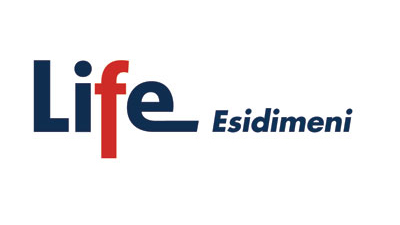 Life Esidimeni (image from South African Non-communicable Diseases Alliance)